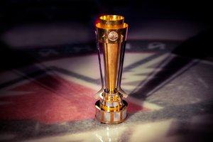 Стали известны участники хоккейного турнира Donbass Open