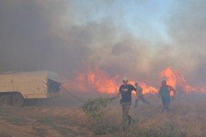 Под Николаевом вспыхнул масштабный пожар (видео)