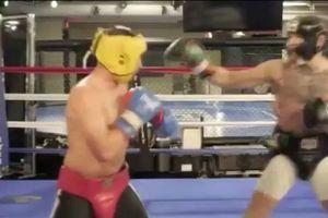 Повимлось видео, как Макгрегор избивает экс-чемпиона мира по боксу в спарринге