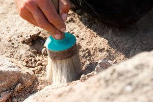 Археологи считают, что раскопали в Крыму античный город Тамирака