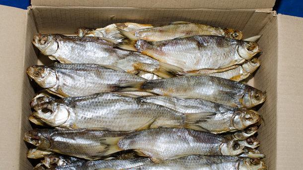 ВХарькове молодого человека вочень тяжелом состоянии доставили в клинику— съел вяленой рыбы