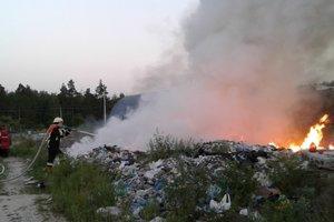 Под Киевом массово возникают пожары в экосистемах