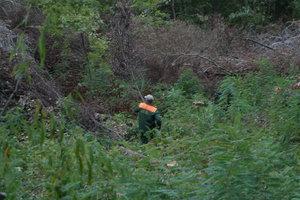 В Киеве пиротехники взорвали опасную мину