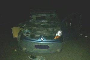 Смертельное ДТП в Ровенской области: столкнулись грузовик и легковушка