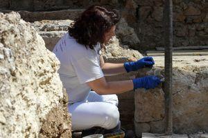 Археологи нашли в Дании тысячелетнюю крепость викингов