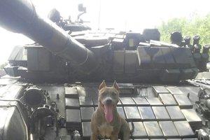Опубликованы новые фото российских танков на Донбассе