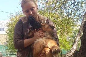 В Одессе задержали женщину, разместившую видео с подвешиванием собаки