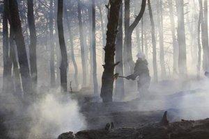 В заповеднике на Хортице произошел лесной пожар