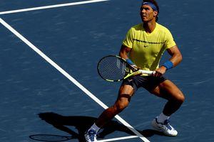 В один день сменились лидеры теннисного рейтинга в трех разрядах