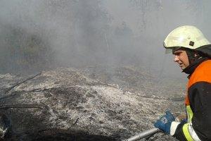 Под Киевом массово горит мусор
