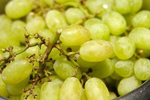 Польза и вред винограда: кому нельзя есть эти ягоды