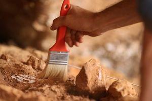 В Египте раскопали древний монашеский город