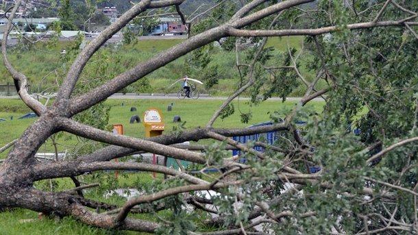 ВТехасе из-за урагана «Харви» закрыли 250 дорог