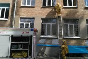 Киевские дома и школы облюбовали опасные насекомые