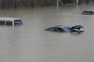 """Ураган """"Харви"""" превратил в металлолом полмиллиона автомобилей"""