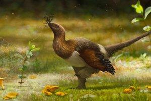 Открыт новый вид неизвестных ранее динозавров