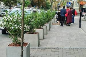 В Киеве на улице Ярославов Вал парковку авто ограничат с помощью деревьев
