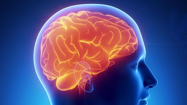 Ученые изучают мозг. Фото: cbsnews.com