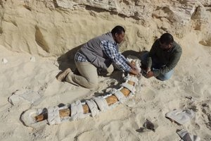 Фото: Saudi Geological Survey