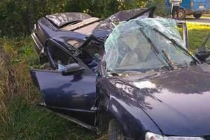 Смертельное ДТП в Винницкой области: молодой водитель врезался в дерево