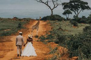 Невероятные свадебные фото: 15 лучших кадров