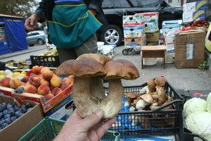 Цены на грибы в Украине побили все рекорды