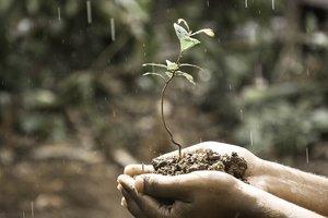 Кабмин подаст в Раду новый закон о земле