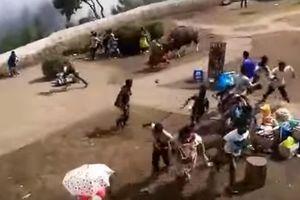 Видеошок: в Индии огромный бизон разогнал туристическую деревню