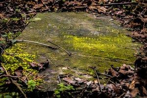 Найдено древнейшее захоронение верховного вождя майя: что было в могиле