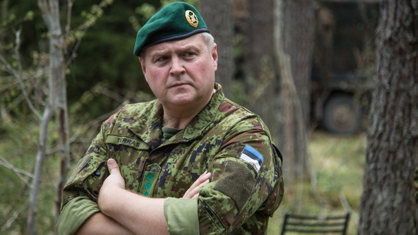 Российская Федерация готова квоенному вмешательству вРеспублике Беларусь,— руководитель Сил обороны Эстонии