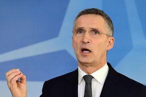 Генсек НАТО поддержал идею Украины по миротворцам