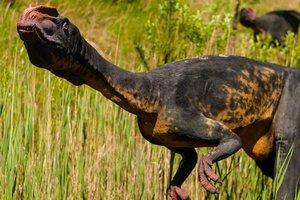 Ученые выяснили, какой необычной едой питались динозавры
