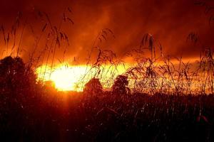 У украинцев резко ухудшится здоровье: астрономы предупредили об опасности