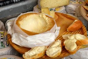 Ученые назвали самые полезные виды сыра