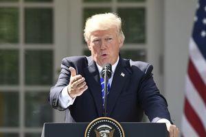 Трамп до сих пор не начал выполнять закон о санкциях против РФ – сенаторы