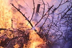 Пожары в Калифорнии унесли уже более двух десятков людей