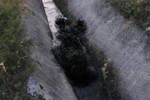 Во Львовской области в сточной канаве нашли мертвую женщину