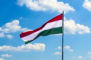 Мовні суперечки: капітуляція Києва чи поразка Будапешта?