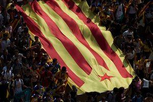 Лидер Каталонии будет отстаивать независимость региона в Сенате Испании