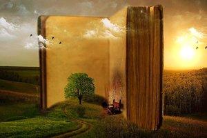 Поиски себя: подборка книг, которые помогут просто быть счастливым