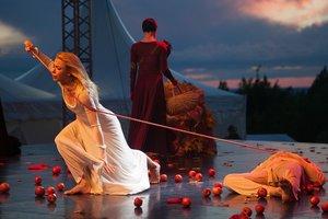 Студентов предупреждают о сексуальном насилии в пьесах Шекспира