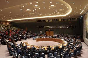 Германия недовольна вето РФ на расследования химатак в Сирии