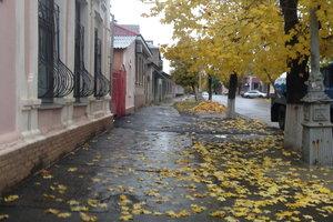 Жестокость или полное безразличие: две истории из Луганска