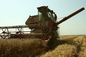 Урожай в Украине не дотянет до рекорда