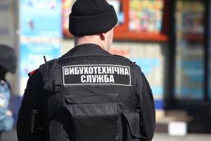 В Луганской области полиция нашла на крыше большие запасы взрывчатки