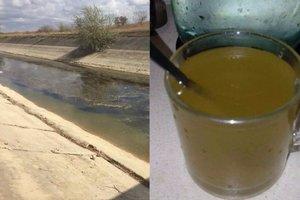Из кранов в Крыму течет болотная вода: шокирующие фото