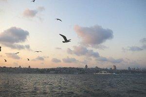 Возле Стамбула нашли 4 тела с пропавшего судна