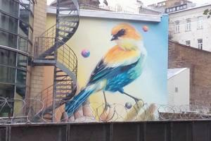 Новые муралы в Киеве: яркая птица на посольстве и первый рисунок на здании полиции