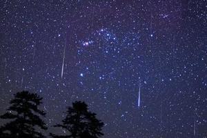 Стало известно, когда украинцы смогут увидеть самый яркий звездопад