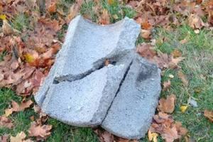 В киевском парке вандалы уничтожили 10 урн